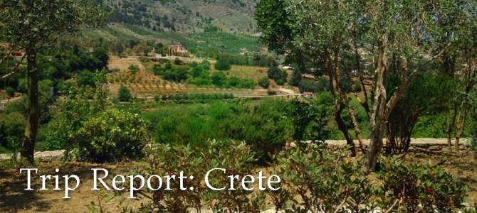 Field Agent Trip Report: Crete