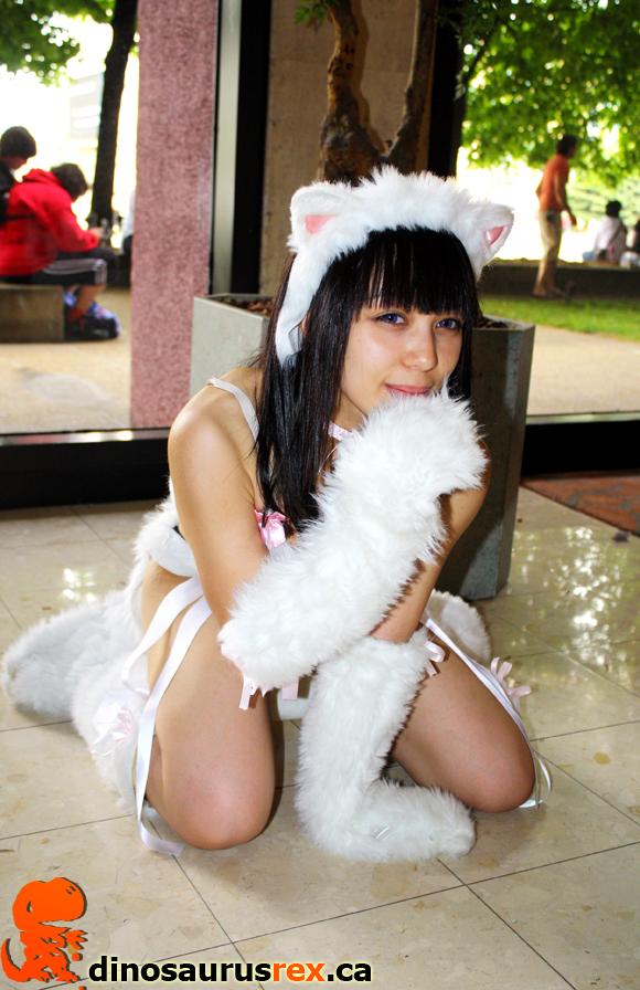 4 sexy cat Cosplay Anime North 2012 dinosaurus rex
