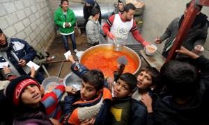 الأمن الغذائي في خبر كان والنظام يطلق مشروع لتشجيع الزراعة الأسرية ويسعى لمنحة من برنامج الأغذية العالمي