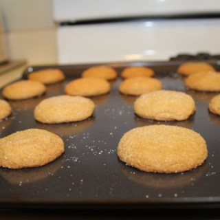 Ginger Snaps in Oven