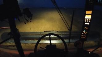 Night wheat