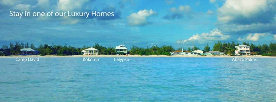 4-Houses-Banner-1000x372
