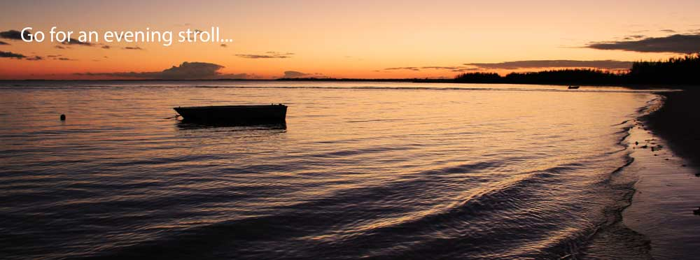 Evening-Stroll-Banner