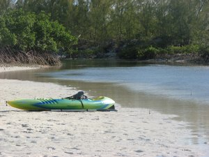 Paddle through the canal at Casuarina Point - beach the kayak and explore