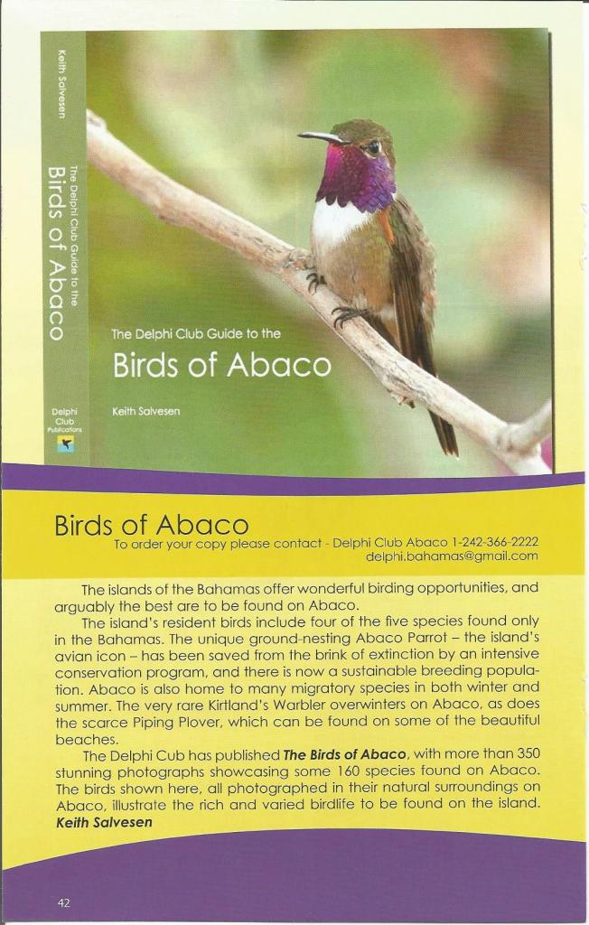 This is an article about the Birds of Abaco from 'Destination Abaco.' The credit for these pictures goes to The Delphi Club.