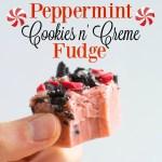 Peppermint Cookies n' Creme Fudge