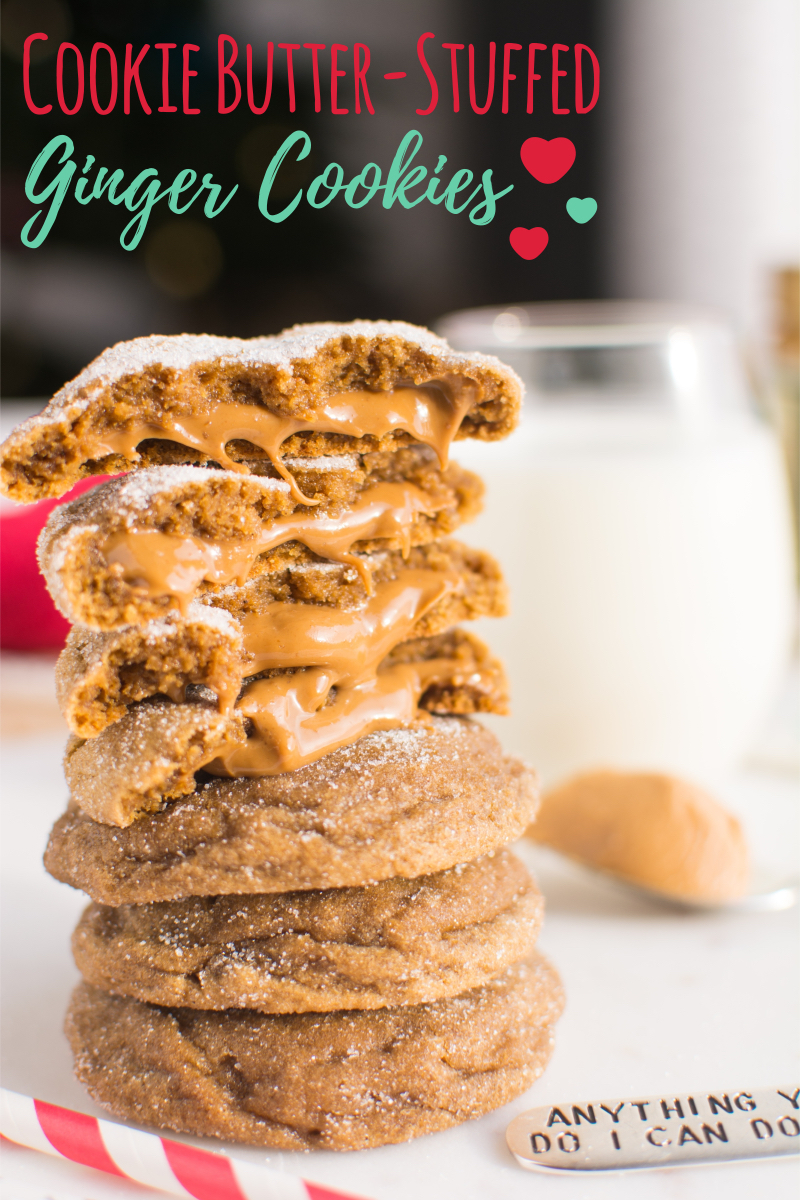 Cookie Butter Ginger Cookies (title)