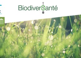 biodiversante