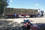 A semi-trailer loaded with hay.
