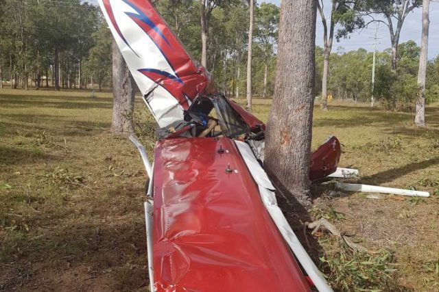 Crashed plane at base of a tree