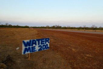 "A home made sign by the side of the road says ""water me 200 metres""."