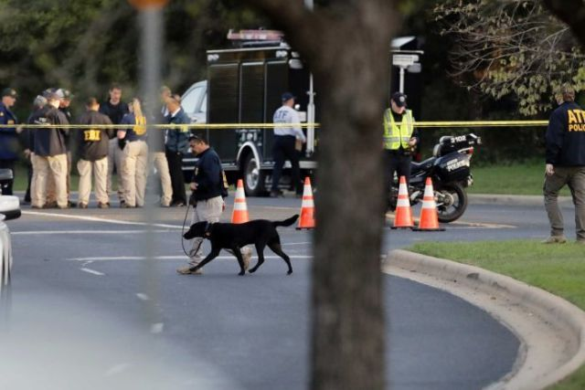 Officials work near the site of Sunday's deadly explosion in Austin. There is a dog and a truck.