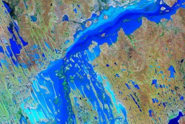 A satellite image of flooding in the Channel Country.