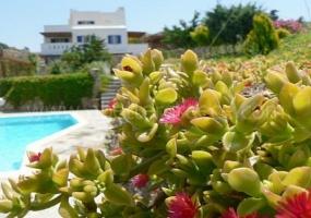 5 Bedrooms, Villa, Vacation Rental, 3 Bathrooms, Listing ID 1161, Naxos, Greece,