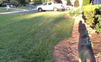 front landscaping part 2 (7)