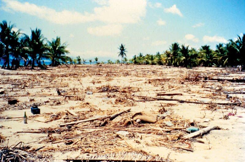 Tsunami NTT 1992 Indonesia