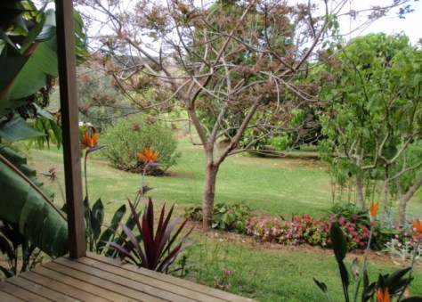 Kerikeri Accommodation. Wharepuke Subtropical Accommodation