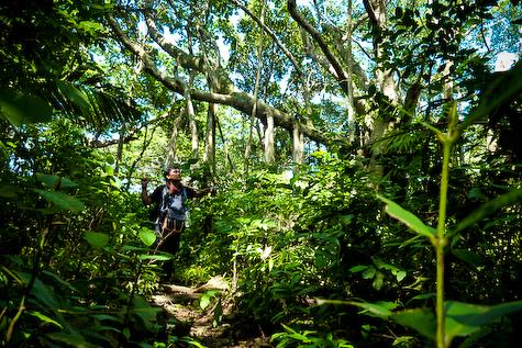 Rimbun hutan menuju Langee. Foto   Fakhrizan