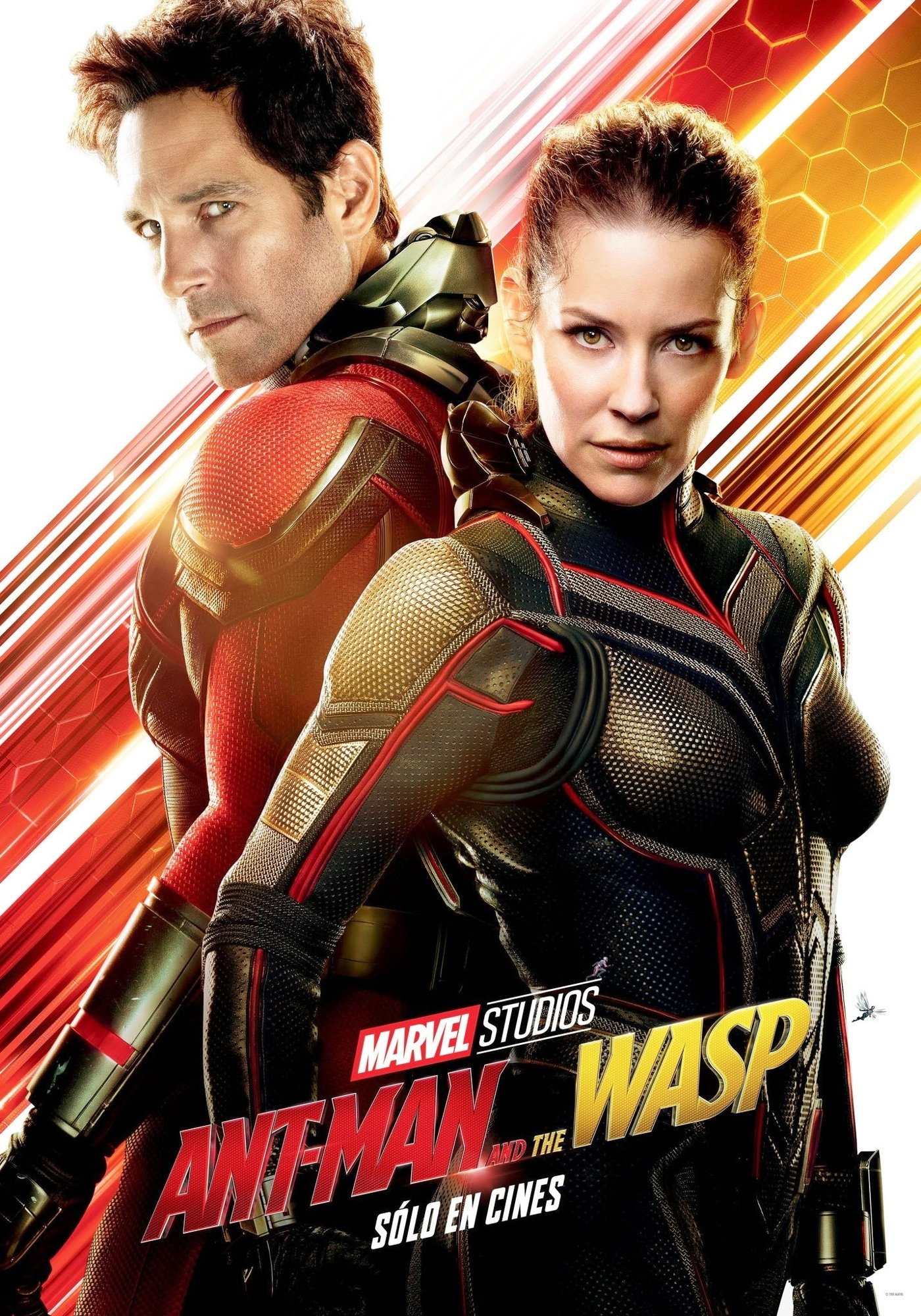 Ant Man and the Wasp Picture 19 Poster of Walt Disney Pictures  Ant Man and the Wasp  2018