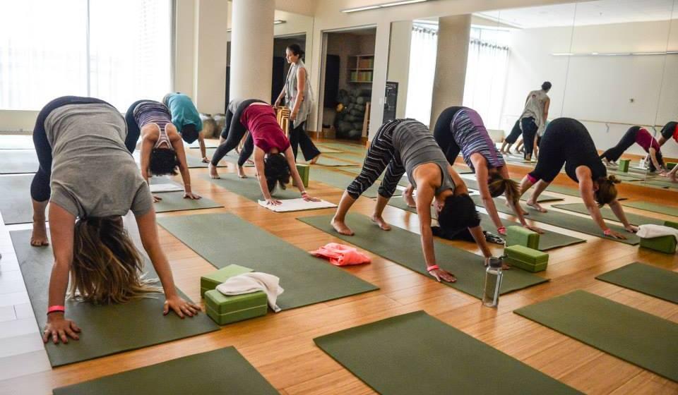 hubhealth3 yoga (1)
