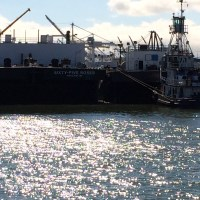 The Sixty-Five Roses and Bernie Briere tied up at the wharf near Alameda Point. (Reader Submitted)
