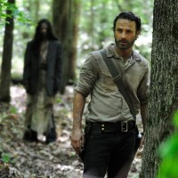 First-Look-photo-TWD-S4-500x751.jpg