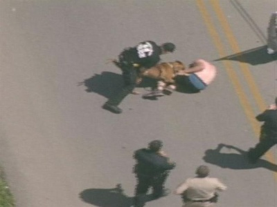Karma in action...he drug the grandmother out of her car and was later drug out himself by a police dog