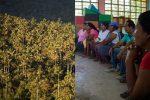 Madre de Dios: capacitan usuarios del bosque en derechos ambientales