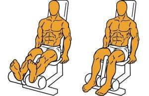 Ejercicio de biceps femoral