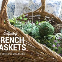 Collecting French Baskets
