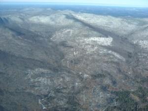 logging roads on Finch lands
