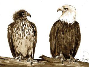 TOS_Eagles