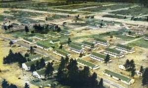 PineCamp1942