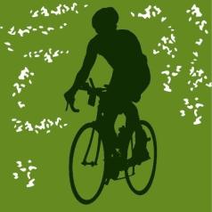 cycle adirondacks