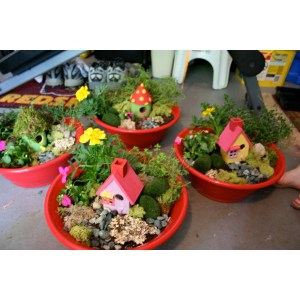 Christmas Adirondack Carousel Upcoming Events Fairy Gardens At Carousel Kids Fairy Garden Kit