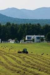 Asgaard Farm. Photo by Nancie Battaglia