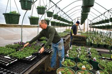 """Rob Hastings, left, uses greenhouses and """"hoop houses"""" to extend the growing season at Rivermede Farm in Keene Valley."""