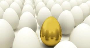 Golden-Egg-m80t81ljcnlppo0blj6z5xwd8rssnhck8n7z1ugqgc