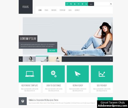 Felius WordPress Teması