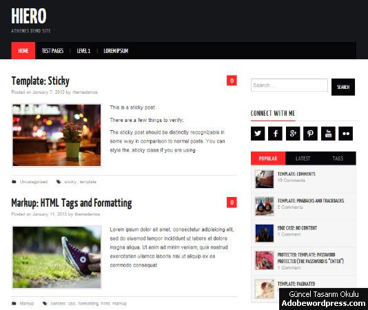 Hiero WordPress Teması