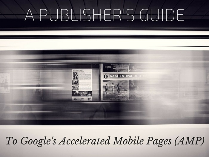 A Publisher's Guide