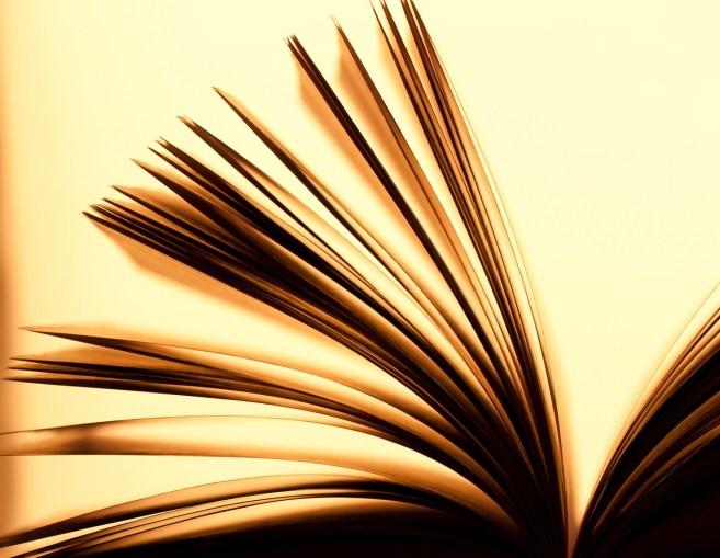 boek.shutterstock_89381125