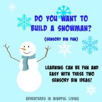 Do you Want to Build A Snowman? Sensory Bin