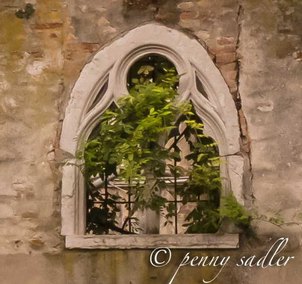 Unusual Details of Venice A Photo essay@PennySadler 2013