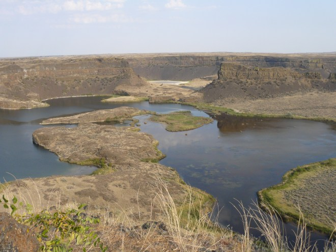 Dry Falls is thought by some to have been the site of the mightiest waterfall ever known. At the end of the last ice age, it is estimated there were recurring floods here with a volume of water 10 times that of all the rivers in the world combined!