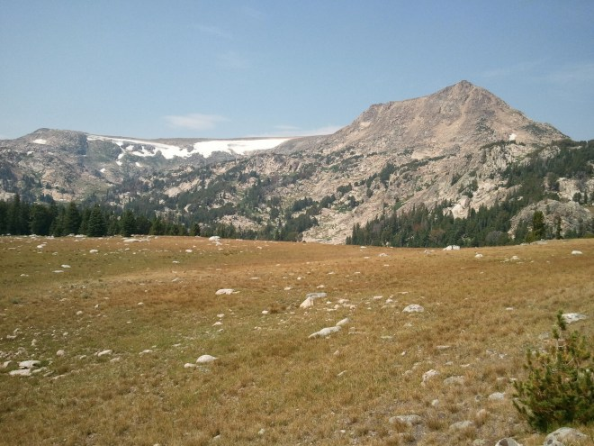 Open ground along the Beartooth Loop National Recreational Trail. Lupe ran all day!