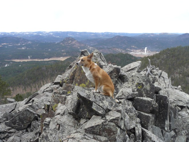 Lupe out on the rocky ledge at the 2nd high point on the way up Samelius Peak. Photo looks W.