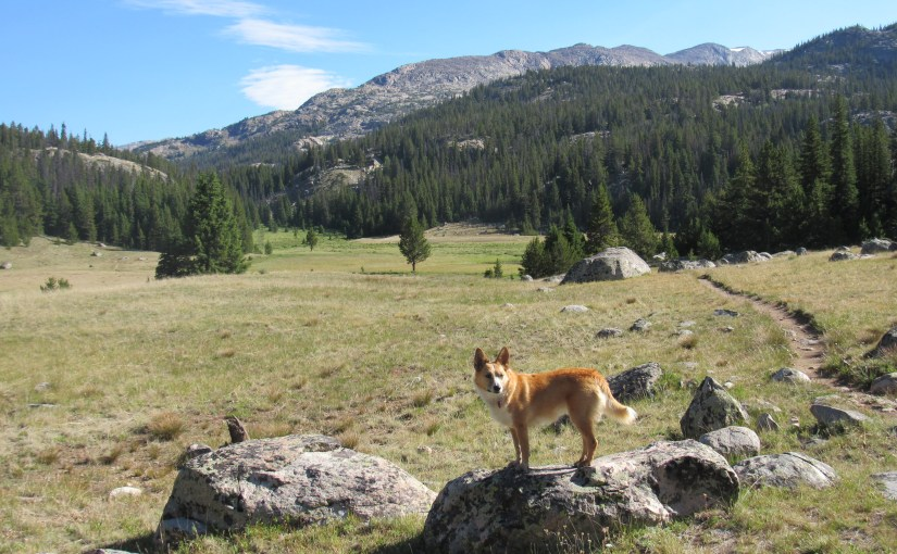 Cloud Peak, Bighorn Mountains, Wyoming – Part 1: The Mistymoon Trail to Base Camp