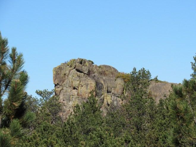 Citadel Rock juts up above the trees. Photo looks NNW.