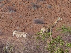 Namibia 11.13 2135